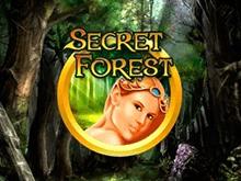 Игровые аппараты Secret Forest