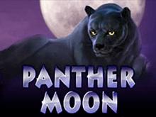 Игровые аппараты Panther Moon