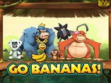 Вперед Бананы!