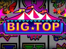 Купол Цирка бесплатно – в аппарат от Microgaming играть