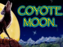 Луна Койота от IGT Slots в демо-режиме онлайн